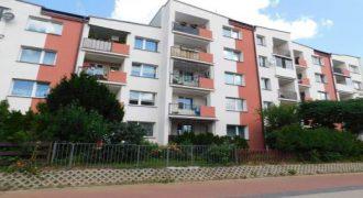 3 pokojowe mieszkanie przy ul. Lityńskiego