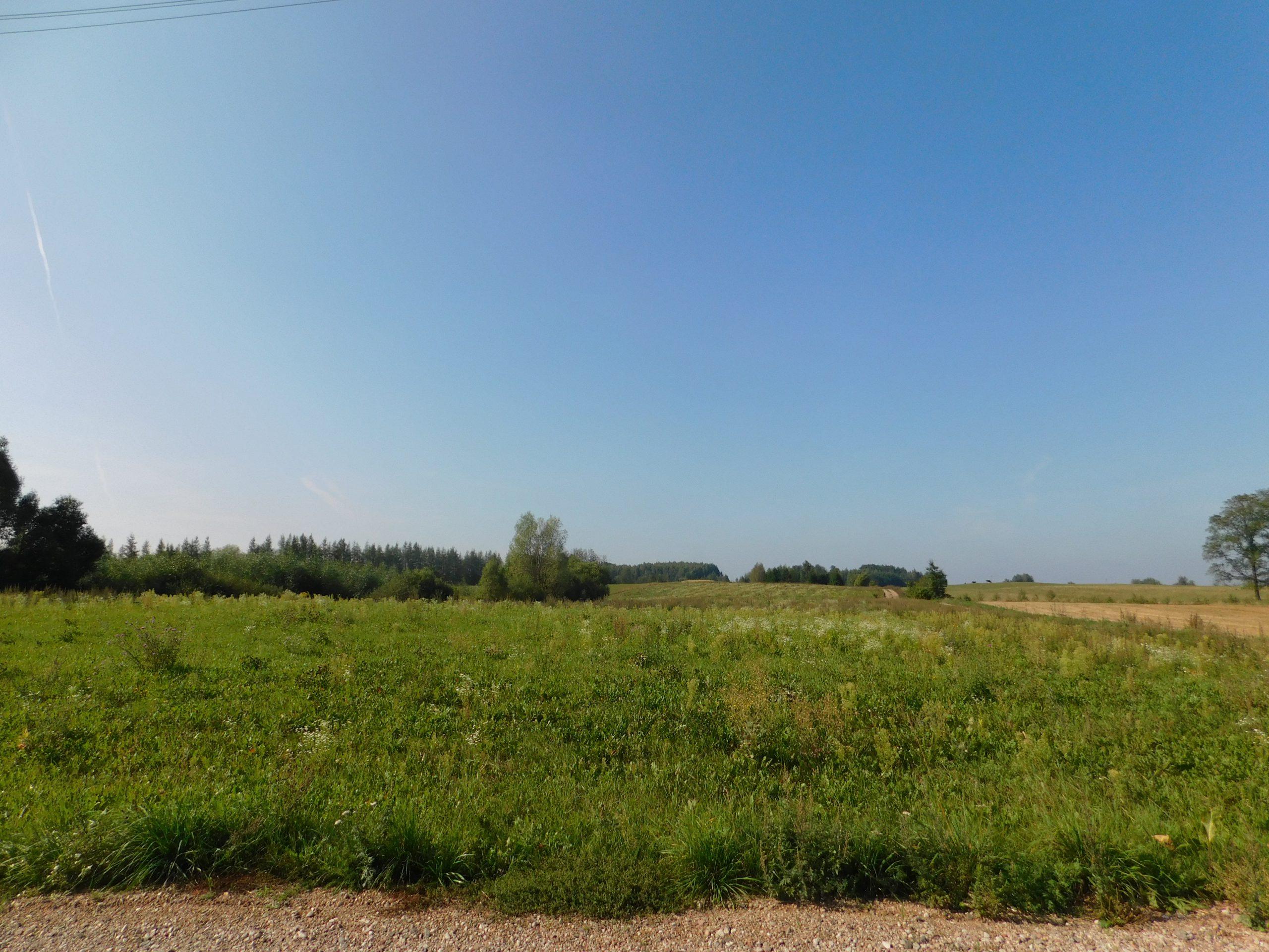 Działka rolno budowlana Zielone Królewskie